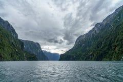 Brant kust i bergen på Milford Sound, fjordland, Nya Zeeland 39 royaltyfri fotografi