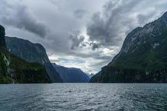 Brant kust i bergen på Milford Sound, fjordland, Nya Zeeland 44 arkivbilder