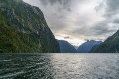Brant kust i bergen på Milford Sound, fjordland, Nya Zeeland 52 royaltyfri fotografi