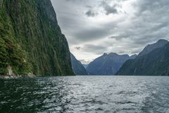 Brant kust i bergen på Milford Sound, fjordland, Nya Zeeland 56 royaltyfria bilder