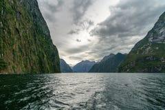 Brant kust i bergen på Milford Sound, fjordland, Nya Zeeland 59 royaltyfri bild