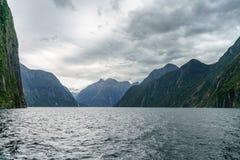 Brant kust i bergen på Milford Sound, fjordland, Nya Zeeland 62 royaltyfri foto