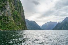 Brant kust i bergen på Milford Sound, fjordland, Nya Zeeland 63 royaltyfri fotografi