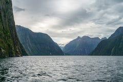 Brant kust i bergen på Milford Sound, fjordland, Nya Zeeland 64 arkivbilder