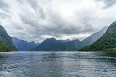 Brant kust i bergen på Milford Sound, fjordland, Nya Zeeland 73 arkivfoton