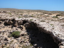 Brant punkt, Westernmost punkt, hajfjärd, västra Australien arkivfoto