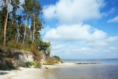 Brant sandig strand och pinjeskog på kusterna av havet eller sjön arkivbild
