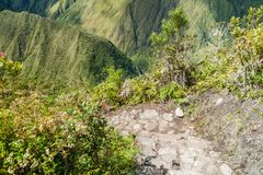 Brant slinga som leder till det Machu Picchu berget royaltyfri bild
