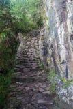 Brant slinga som leder till det Machu Picchu berget royaltyfria bilder