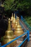 Brant trappa och guld- stupas royaltyfri fotografi