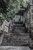 Brant trappa som upp till går den Trsat slotten arkivbild