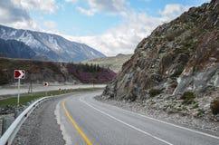 Brant v?nd av v?gen p? det slingrande berget Berglandskap av det Chui omr?det, Altai arkivfoto