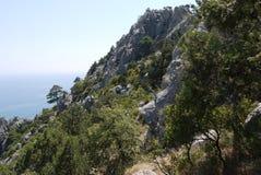 Branta klippor som täckas med gräs på bakgrunden av det stora havet Royaltyfri Fotografi