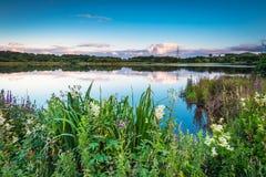 Branton Nature Conservation Area Fotos de archivo libres de regalías