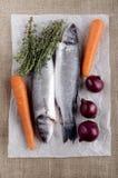 Branzino e verdura su carta Fotografie Stock Libere da Diritti
