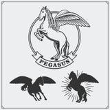 Brasão da heráldica do cavalo Etiquetas, emblemas e elementos do projeto para o clube de esporte Fotos de Stock Royalty Free
