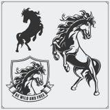 Brasão da heráldica do cavalo Etiquetas, emblemas e elementos do projeto para o clube de esporte Imagens de Stock Royalty Free
