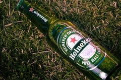 Brasília, distretto federale - Brasile 18 giugno 2019 Ha fotografato una bottiglia della birra di Heineken sul prato inglese con  fotografia stock libera da diritti