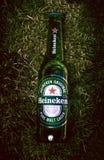 Brasília, obwód federalny - Brazylia Czerwiec 18, 2019 Fotografował butelkę Heineken piwo na gazonie z lekkim skutkiem obrazy stock