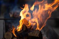 brasa loan grå lampa för brand den wood vedtraven Grilla och laga mat brand Woodfire med flammor arkivbilder