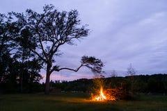 Brasa som glöder på solnedgången i amerikansk bygd med det utomhus- trädet Royaltyfria Bilder