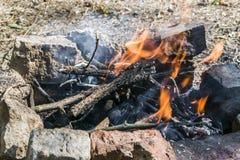 Brasa som skilja sig från i varma branden för skog den mycket Royaltyfri Bild