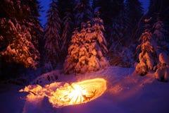 Brasan i vinterskogen exponerar snön Royaltyfria Foton