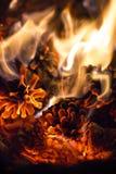 Brasas do fundo macio do fogo romântico dos cones do pinho Fotografia de Stock