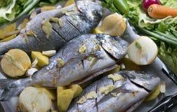 Brasemvissen op een bakseldienblad met aardappels en uien wordt gevoerd die stock afbeeldingen