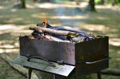 Brasero avec le bois de chauffage brûlant Photo stock