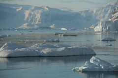 Brash ice, icebergs on an ocea Stock Images