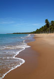Brasil Alagoas Maceio abandonou a praia alinhada palma Fotografia de Stock