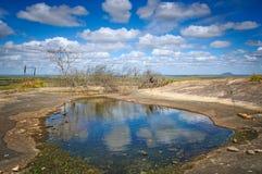 Brasil Landscape Stock Images