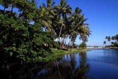 Brasil, Maceio, estuário do rio Fotografia de Stock Royalty Free
