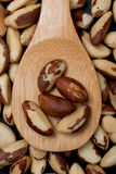 Brasil nut. On wooden spoon close up image royalty free stock photo