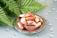 Brasil nuts Royalty Free Stock Images