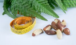 Brasil nuts. Measurement tape and green leaves Stock Photography