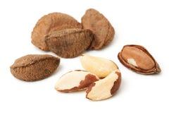 Brasil nuts Stock Photos