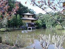 Brasileño Kinkakuji Imagen de archivo