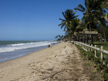 Brasilian coast Royalty Free Stock Photos