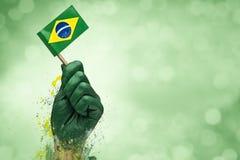 Brasilianen fläktar patrioten Arkivfoto