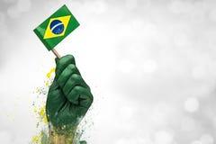 Brasilianen fläktar patrioten Fotografering för Bildbyråer