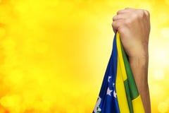 Brasilianen fläktar patrioten Royaltyfri Foto
