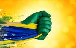 Brasilianen fläktar patrioten Royaltyfri Fotografi