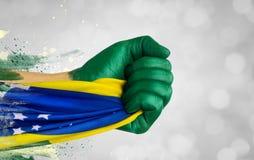 Brasilianen fläktar patrioten Arkivbild