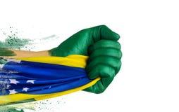 Brasilianen fläktar patrioten Arkivfoton