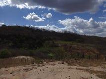 Brasilianer Backwood-Landschaft stockfotografie