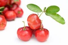 Brasilianische Acerola-Frucht Stockbild