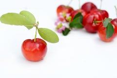 Brasilianische Acerola-Frucht Stockfotos