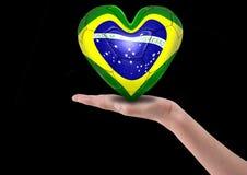 Brasilianische Gebläse Lizenzfreies Stockfoto
